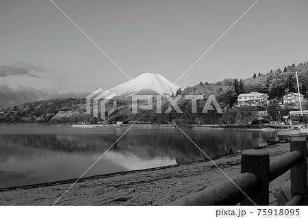 昔風なモノクロの山中湖村の富士山 75918095