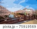 福岡県柳川市乗船場の桜 75919569