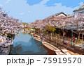 福岡県柳川市乗船場の桜 75919570