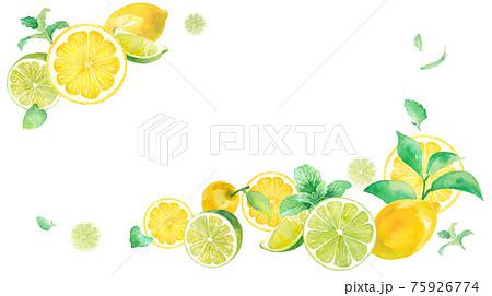 爽やかなシトラスとミントの水彩イラスト。2隅を装飾したフレームデザイン。バナー背景。レモンとライム。 75926774