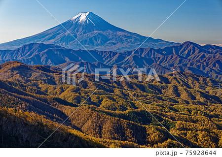 秋の大菩薩峠から見る紅葉の山並みと富士山 75928644