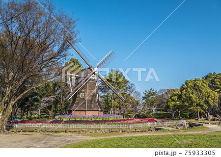 愛知県 名古屋市 名城公園 75933305