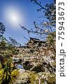 春の虎渓山永保寺庭園 75943673