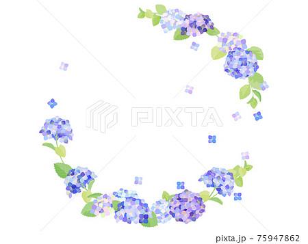紫陽花のフレーム 75947862