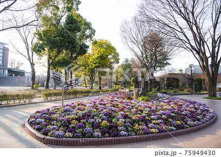 愛知県 名古屋市名城公園 75949430