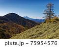 大菩薩連嶺・石丸峠の草原と小金沢山・富士山の眺め 75954576