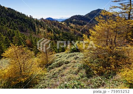 大菩薩連嶺・石丸峠から見る狼平と小金沢山 75955252