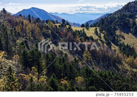 大菩薩連嶺・熊沢山の巻道から見る狼平と雁ヶ腹摺山 75955253