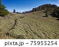 大菩薩連嶺・石丸峠の草原を行く登山者と天狗棚山 75955254