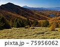 大菩薩連嶺・石丸峠の草原と小金沢山・富士山の眺め 75956062