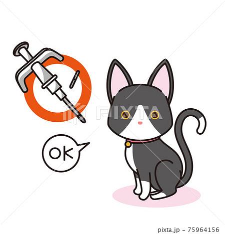 マイクロチップを装着した黒猫 75964156