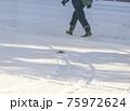 吹雪の歩く人 75972624