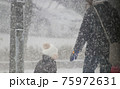 吹雪の歩く人 75972631