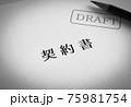契約書ドラフト DRAFT 仮 表紙 書類 75981754