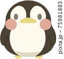 ペンギン 75981883