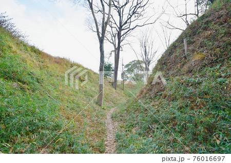 興国寺城 本丸と北の丸間の堀 76016697