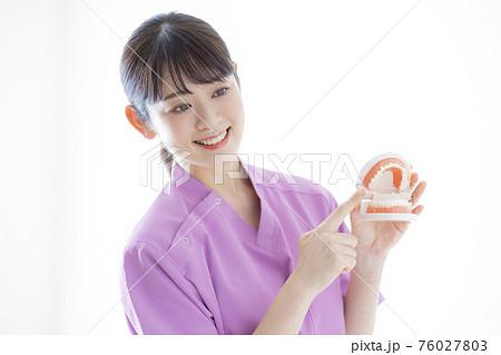 歯科衛生士 76027803