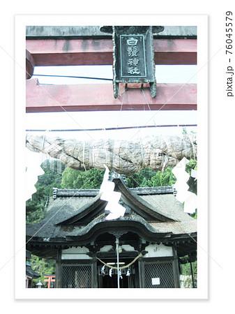 フィルム写真 白髭神社 76045579