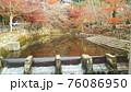川に映り込む紅葉 76086950