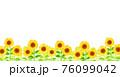 背景素材_ひまわり 76099042