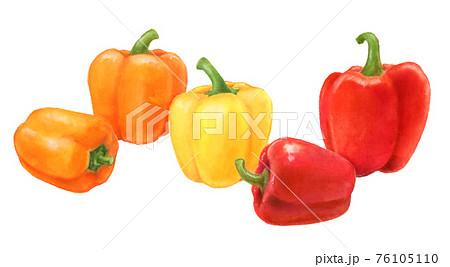 パプリカ 野菜の手描きイラスト 76105110