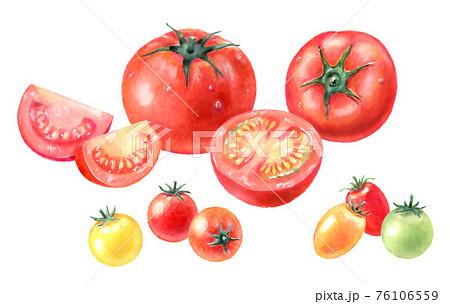 ミニトマトとトマトのイラストセット 76106559