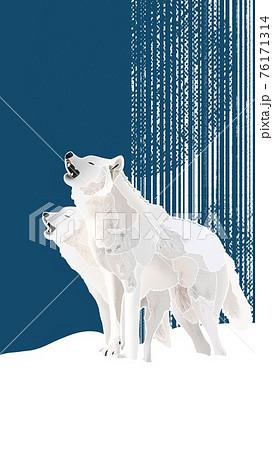 Tundra wolf / ツンドラウルフ 76171314