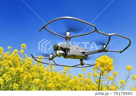 菜の花畑を飛ぶドローン 76179065