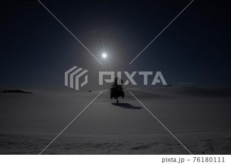 【北海道富良野の冬】八幡丘ツリー 1月 76180111