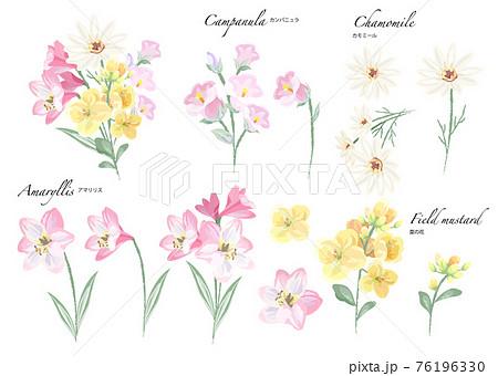 春〜初夏の花素材 水彩 76196330