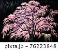 神夢(かむゆめ) 76223848