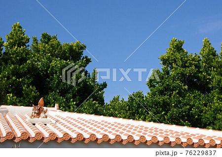 青空とシーサーに見守られた沖縄の伝統家屋 76229837