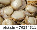 ホタテの貝柱 76254611