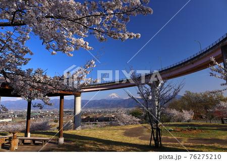 山梨県南アルプス市曲輪田新田 桃花橋ループと富士山 76275210