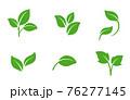葉のアイコンセット 76277145