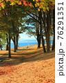 秋を迎えたイングリッシュベイ(カナダ バンクーバー) 76291351
