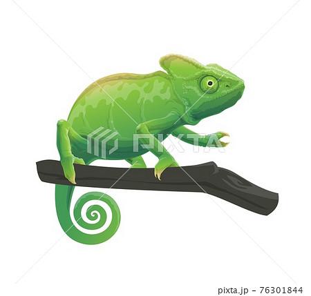 Chameleon cartoon animal on tree branch 76301844