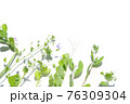 草花の寄せまとめフレーム 76309304