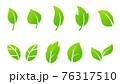 葉のアイコンセット 76317510