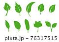葉のアイコンセット 76317515