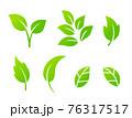 葉のアイコンセット 76317517
