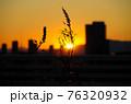 都内の夕焼け 76320932