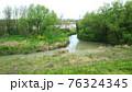 菜の花が咲いている川 76324345