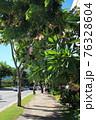 ホノルルの町並み(アメリカ合衆国 ハワイ州) 76328604