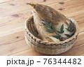 タケノコ 76344482