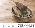 タケノコ 76344484