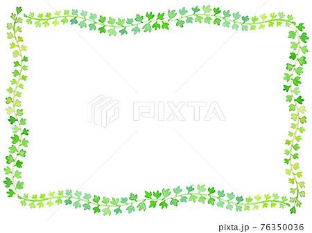 緑色のつたの水彩イラストによるフレーム 76350036