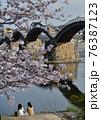 錦帯橋と満開の桜 76387123