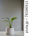 植物 工場 プランツ 76396915