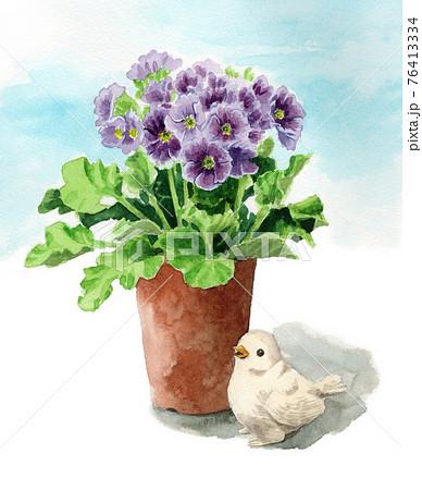 アナログ水彩鉢植えのトキワザクラ 76413334